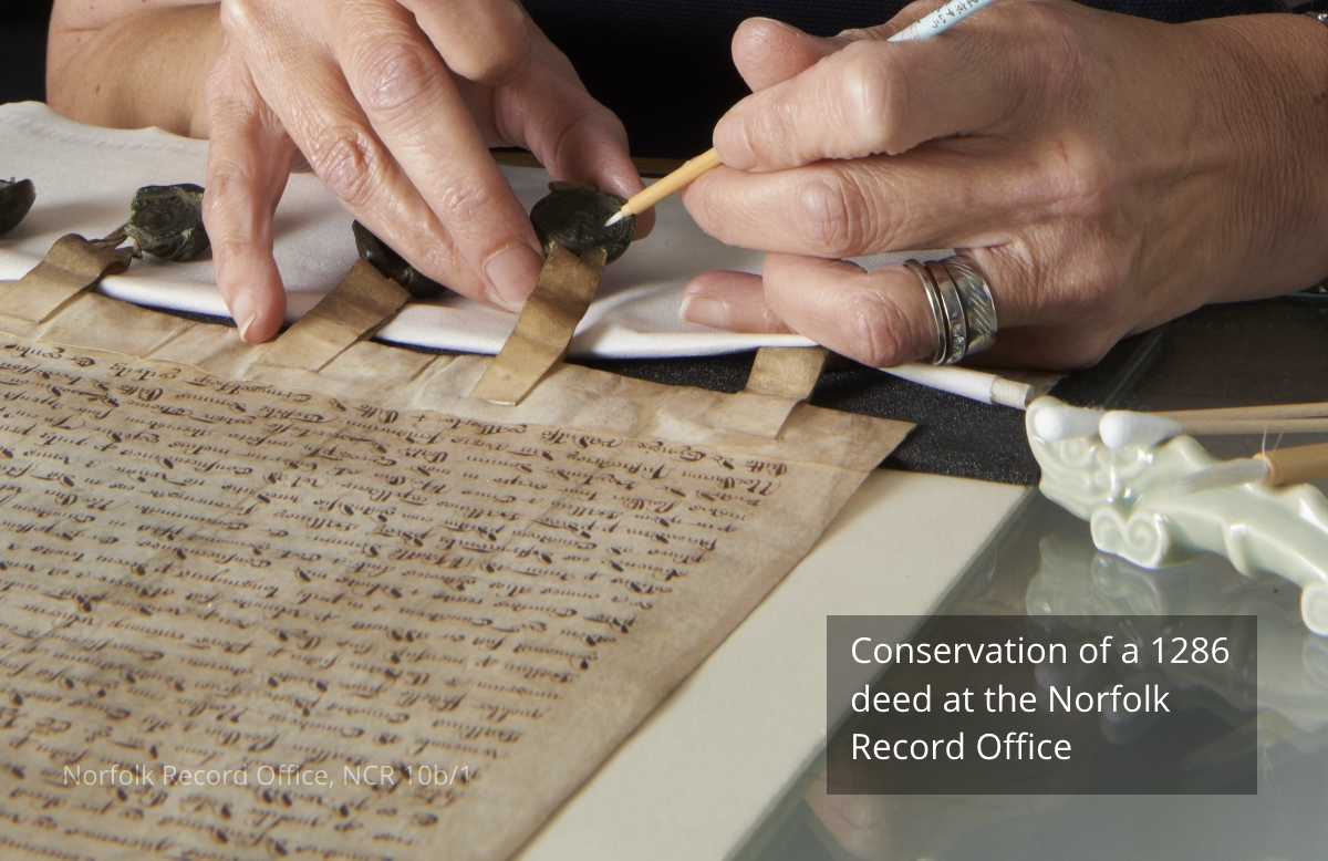 Conservation of a 1286 deed at the Norfolk Record Office